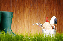 Autumn garden tools Stock Image