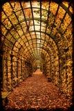 Autumn garden tunnel Stock Photo