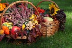 Autumn in garden Royalty Free Stock Photography
