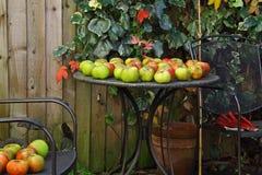 Autumn Garden Windfall Royalty Free Stock Photos
