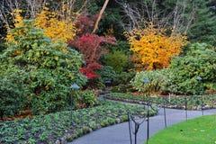 Autumn gardens Stock Images