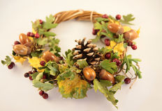 Autumn garland Stock Images