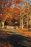 Autumn Gate Royalty Free Stock Image