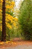 The Autumn Gate1 Stock Photo