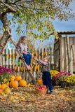 Autumn gathering apples on the farm. Children collect fruit in the basket. Outdoor fun for kids. royalty free stock image