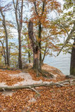 Autumn in Gdynia Royalty Free Stock Photo