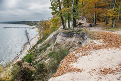 Autumn in Gdynia. Autumnal trees on Kepa Redlowska cliff-like coastline in Gdynia, Poland Royalty Free Stock Image