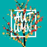 Autumn geometric adversting.vector illustration. eps 10. sale poster. Autumn tree and leaves. Green background royalty free illustration