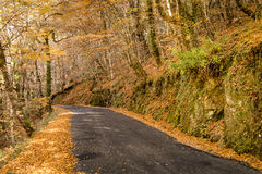 Autumn, Geres, Portugal Royalty Free Stock Photos