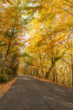Autumn, Geres, Portugal Royalty Free Stock Photography
