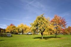 Autumn in germany. Autumn near erlangen in germany Stock Photos