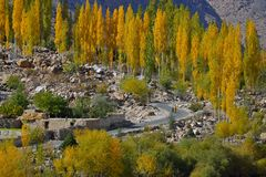 Autumn at Ghizer Valley. Northern Pakistan. Royalty Free Stock Photos