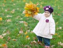 Autumn gift Stock Photo