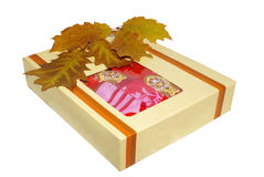 Autumn gift. Gift box with bad-clathers and autumn leaves Royalty Free Stock Photo