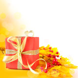 Autumn gift border Royalty Free Stock Photo