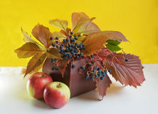 Autumn Gifts Royalty Free Stock Images