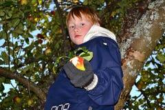 Autumn gifts Royalty Free Stock Photos