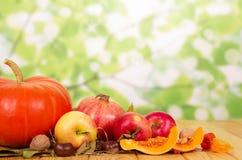 Autumn Gifts: calabaza, manzanas, granadas en fondo verde abstracto Fotografía de archivo