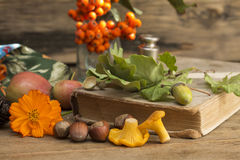Autumn gifts close up. On a wooden background royalty free stock image