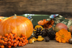 Autumn gifts close up. On a wooden background stock photography