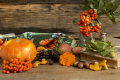 Autumn gifts close up. On a wooden background stock photos