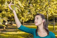 Autumn Girl Royalty Free Stock Photography