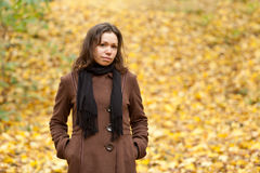 Autumn girl. Young woman with autumn yellow background royalty free stock photography
