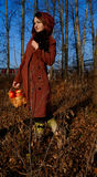 Autumn Girl Royalty-vrije Stock Afbeelding