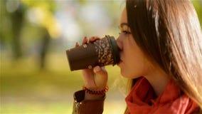 Autumn Girl Drinking Coffee Fall-Konzept der jungen Frau heißes Getränk von der Wegwerfkaffeetasse im Fall-Park genießend stock video footage
