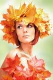 Autumn-girl on green Stock Photography