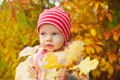 Autumn girl. Little baby girl outdoors discovers autumn leaves Stock Photography