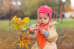 Autumn girl. Little baby girl outdoors discovers autumn leaves Royalty Free Stock Images