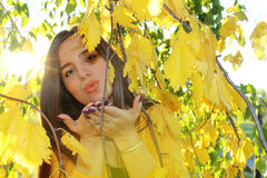 Autumn girl outdoors Stock Photography