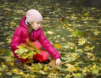 Autumn. The girl in the park. royalty free stock image