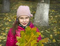 Autumn. The girl in the park. stock photography