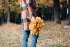 Autumn girl walking in city park. Portrait of happy lovely and beautiful young woman in forest in fall colors. Focus on. Autumn girl walking in city park royalty free stock images