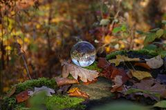 Autumn through a glass ball. Autumn compositions with glass bowl stock photography