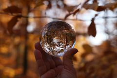 Autumn through a glass ball. Autumn compositions with glass bowl royalty free stock photos