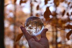 Autumn through a glass ball. Autumn compositions with glass bowl stock photos