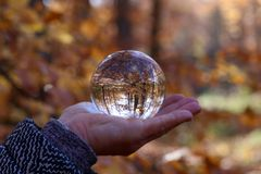 Autumn through a glass ball. Autumn compositions with glass bowl royalty free stock photo
