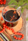 Autumn in a glass of mulled wine Royalty Free Stock Photos