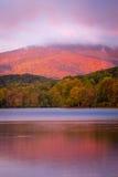 Autumn Glow Arkivfoton