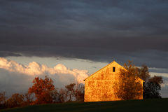 Autumn Glow With Storm Clouds Royaltyfri Foto