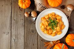 Autumn gnocchi with a pumpkin cream sauce, above table scene over wood with copy space Royalty Free Stock Photos