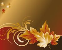 Autumn gold background,  Stock Photos