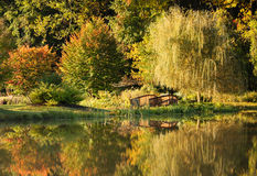 Autumn Gold Reflections Landscape Park Royalty Free Stock Photography