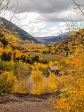 Autumn Gold in San Juan Mountains stock afbeelding