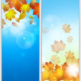 Autumn Golden Banners Fotografia de Stock