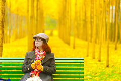 Ginkgo trees and girl Stock Photography