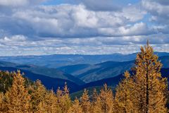 Autumn golden trees, mountains and clouds. stock images